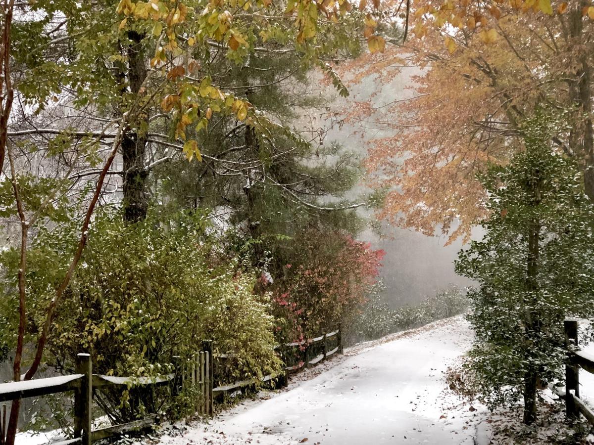 Snowy path Nov. 15, 2018 snowstorm