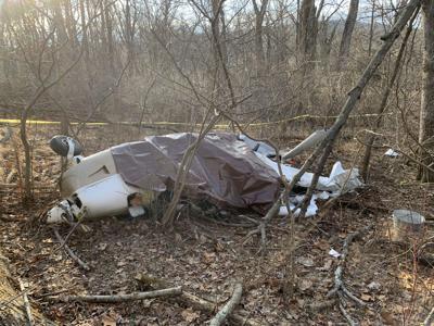 plane crash William Krens, 77,