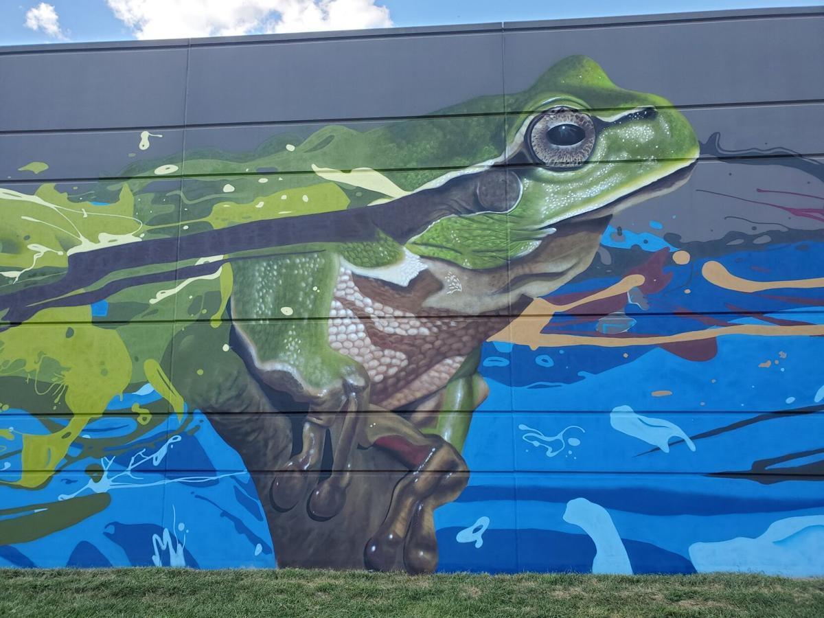 Photo_News_Mural_Frog.jpg