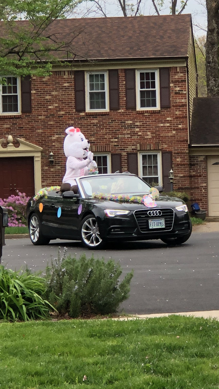 Montclair Easter Bunny