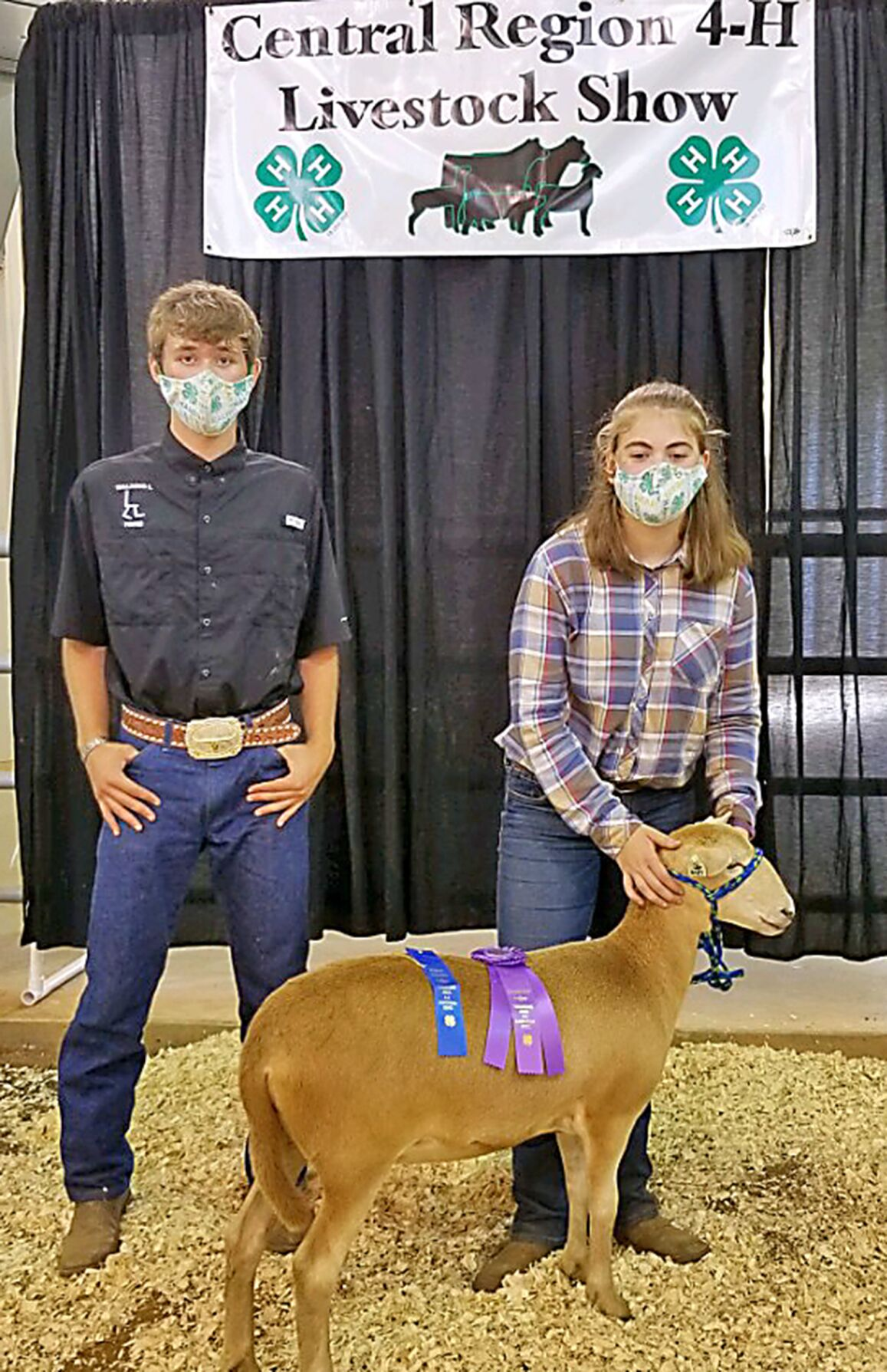Calum Lavacot's Grand Champ Katahdin Ewe at Central Region 4-H Sheep Expo exhibited by Gately Pfeiffer web.png