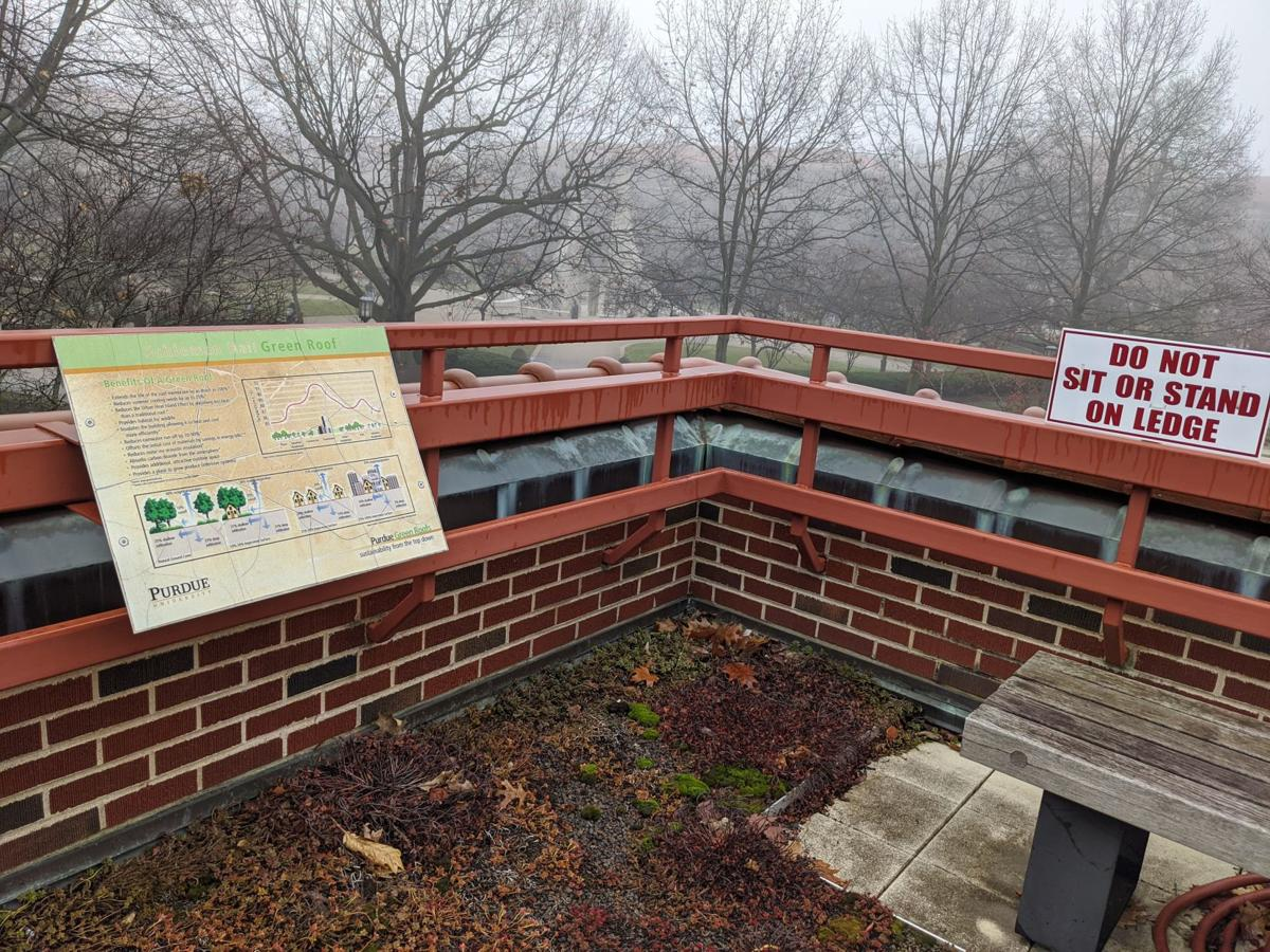 1/16/20 Schleman Hall green roof