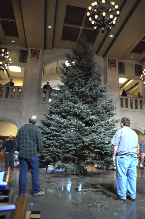 30-foot Christmas tree brings color to Memorial Union | Features ...