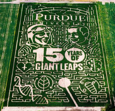 9/9/2019 Purdue Corn Maze