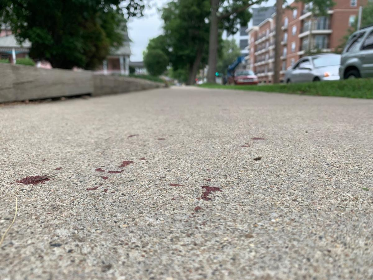 6/17/19 Blood Trail