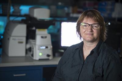 9/2/19 Prof. Sophie Lelievre