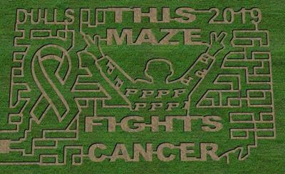 8/11/19 Trent corn maze