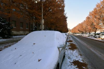11/12/19 Snowfall