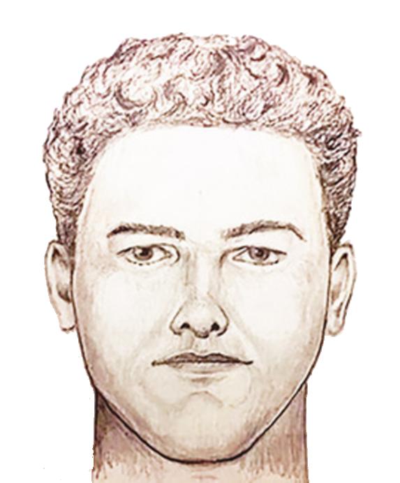 2/11/20 Delphi suspect