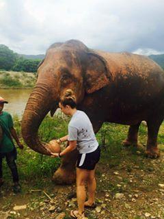 9/10/15 Vet Student Trip to Thailand