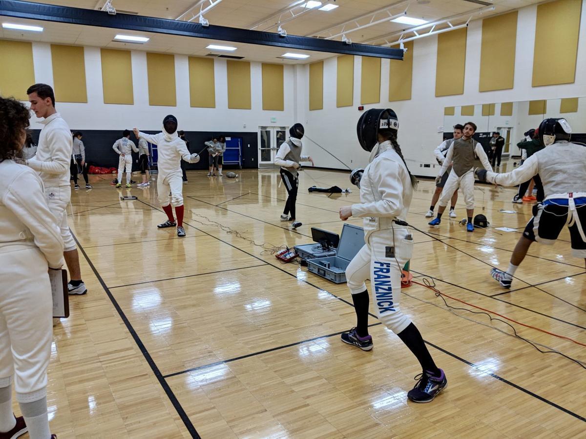 5/1/19 Franznick fencing action