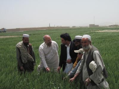 5/20/2012, Agriculture in Afghanistan, Kevin McNamara