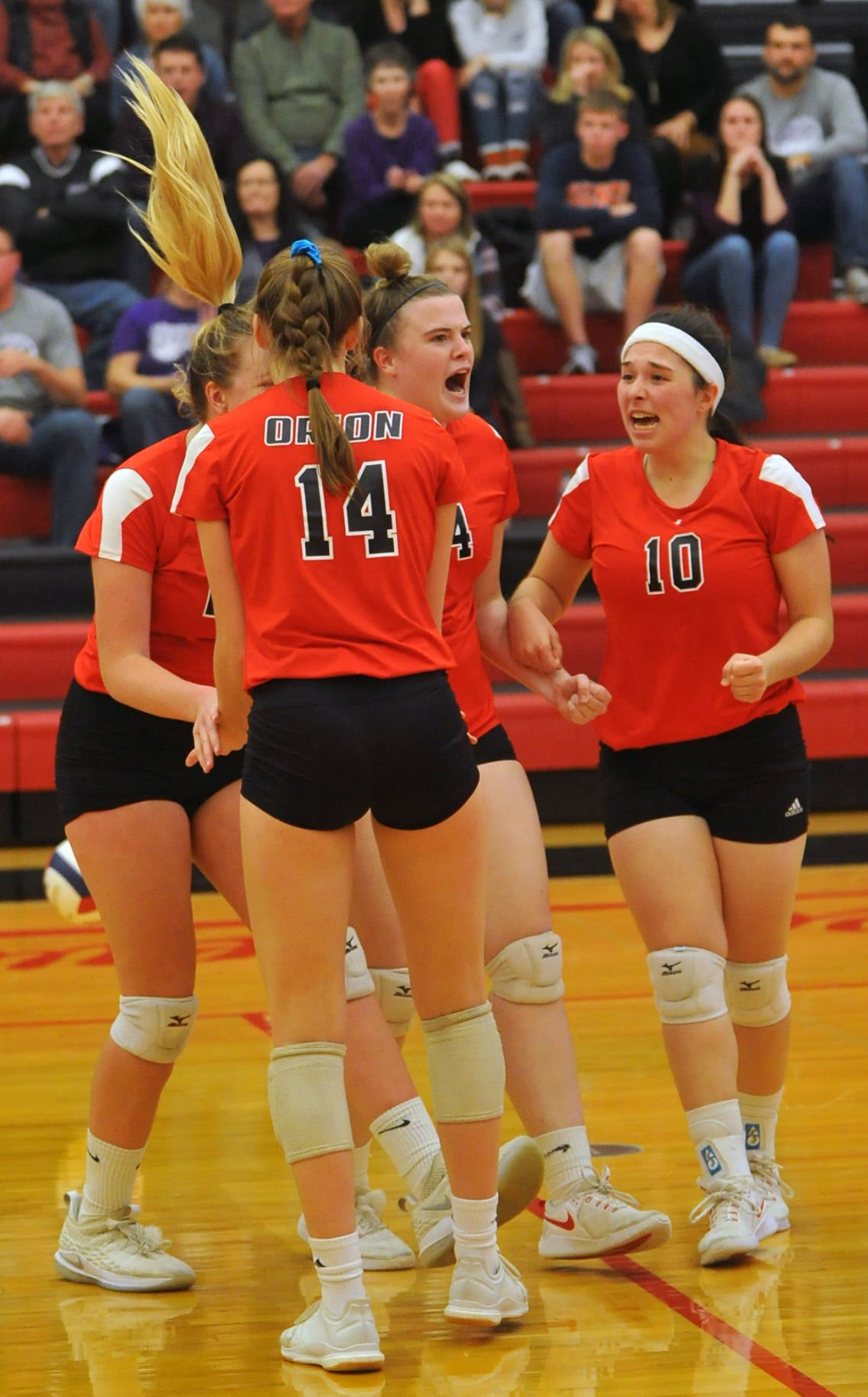 Orion vs El Paso Sectional volleyball tournament