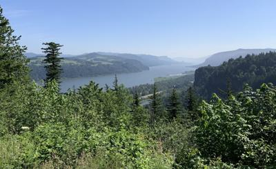 View of the Columbia River Gorge from the Portland Women's Forum near Corbett, Oregon, on June 1, 2019.