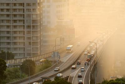 Never mind the lungs — air pollution can scramble your brain