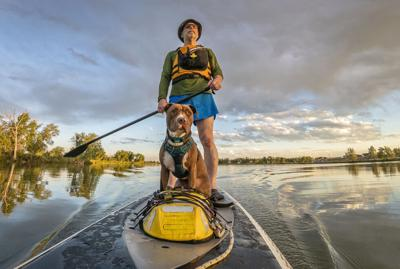 Perfect dog-friendly paddleboard adventures - Image
