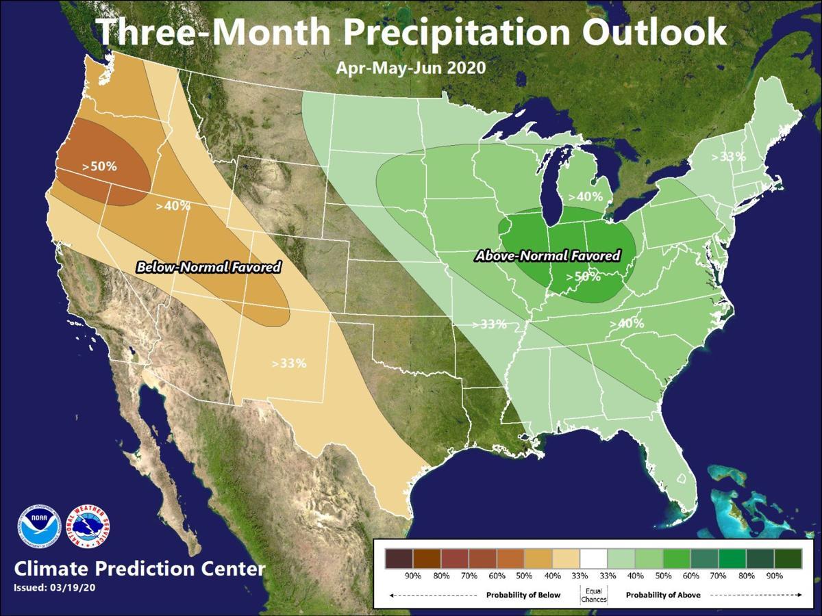 Three month precipitation outlook