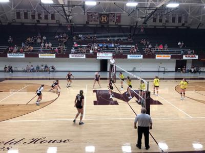 moline volleyball