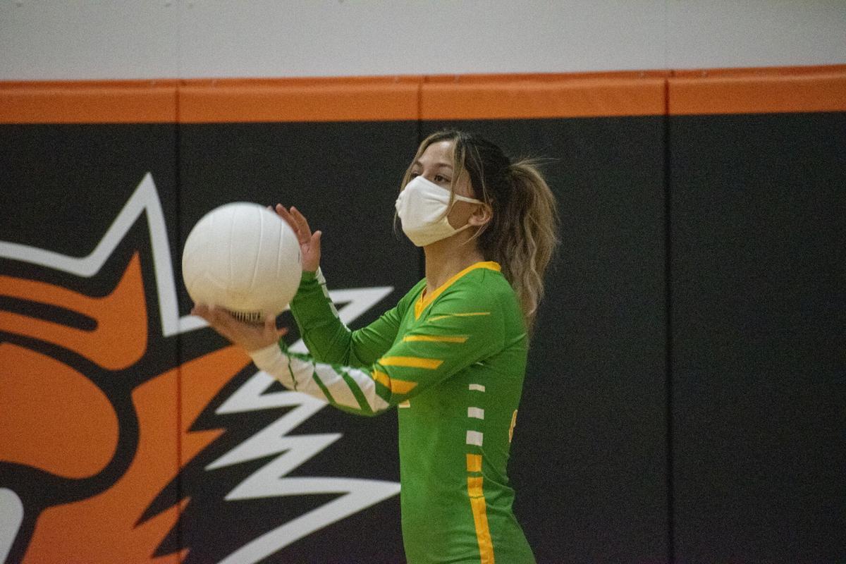 volleyball 3.jpg