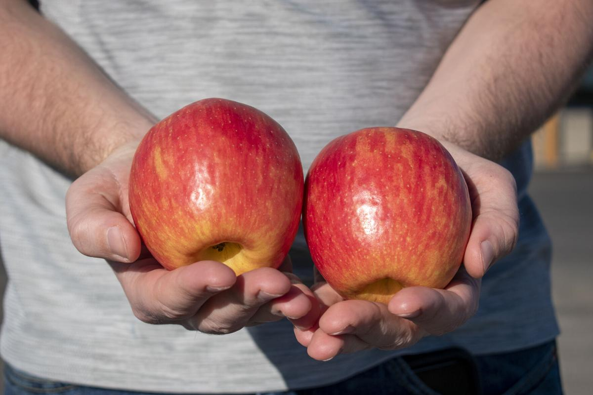 apples in hand