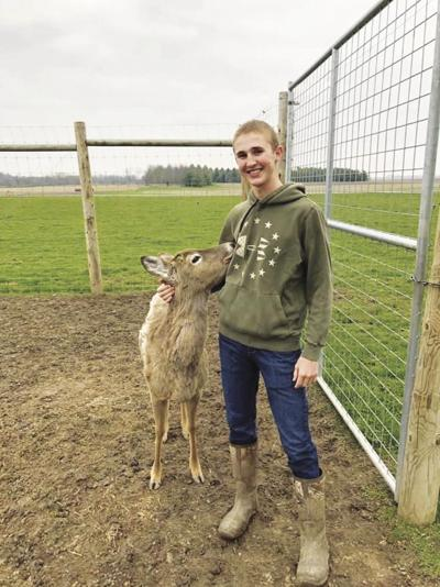 Fisher FFA member's state award-winning project 'deer' to his heart