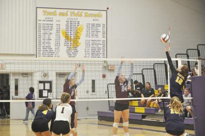 Eagles volleyball much improved