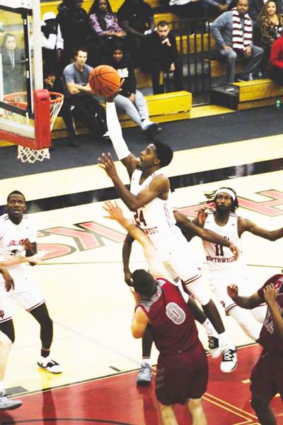Gibson flying high with the Redhawks