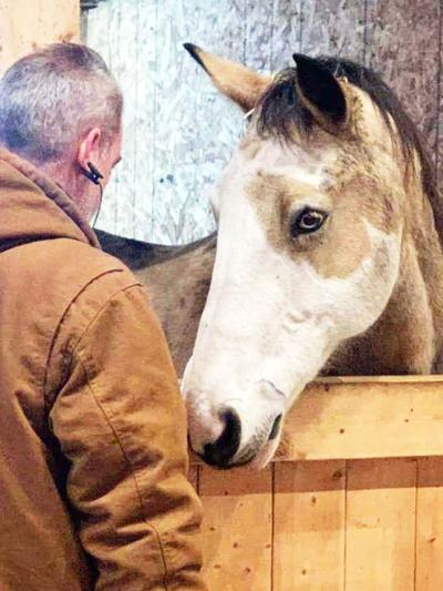 Veterans spend time with horses to relieve stress