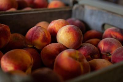 It's peach season in Rappahannock County
