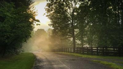 road-mist-story.jpg