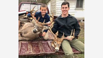 deer-story.jpg