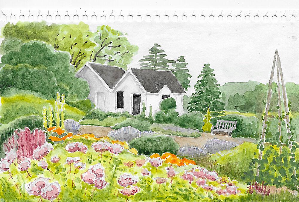 Herb garden watercolor John Jay Homestaed