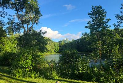 Todd's Pond 1