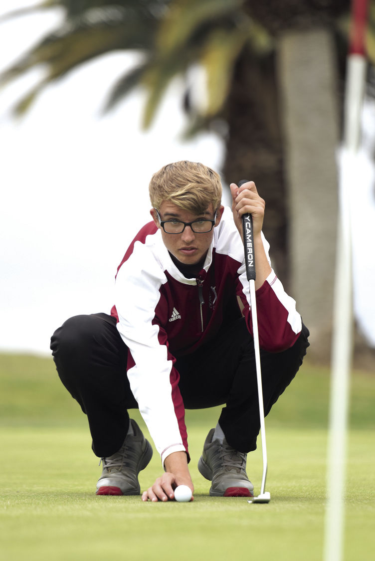 Colton Painter is Boys Golfer of the Year