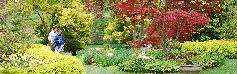 ladew gardens_yellow_top.jpg
