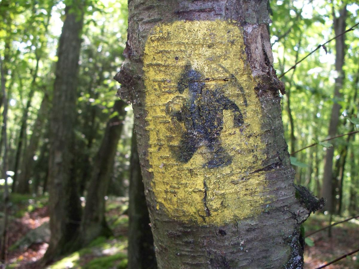 Weiser State Forest Miner Trails (3).JPG