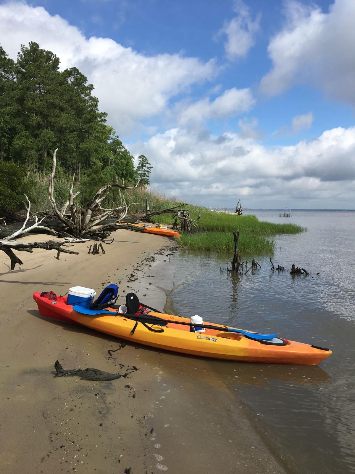 Kayak Touring the  Potomac.jpg
