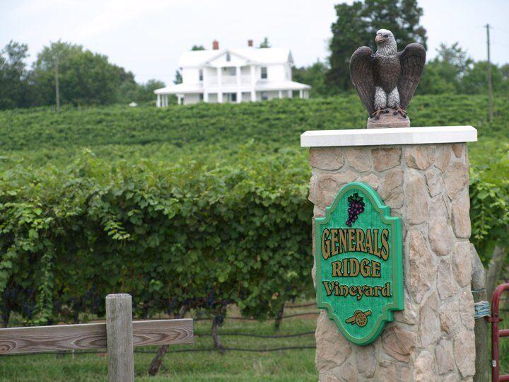 Generals ridge vineyard.jpg