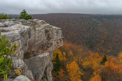 Dolly Sods2