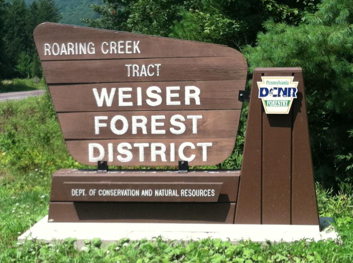 Weiser State Forest Miner Trails (4).JPG