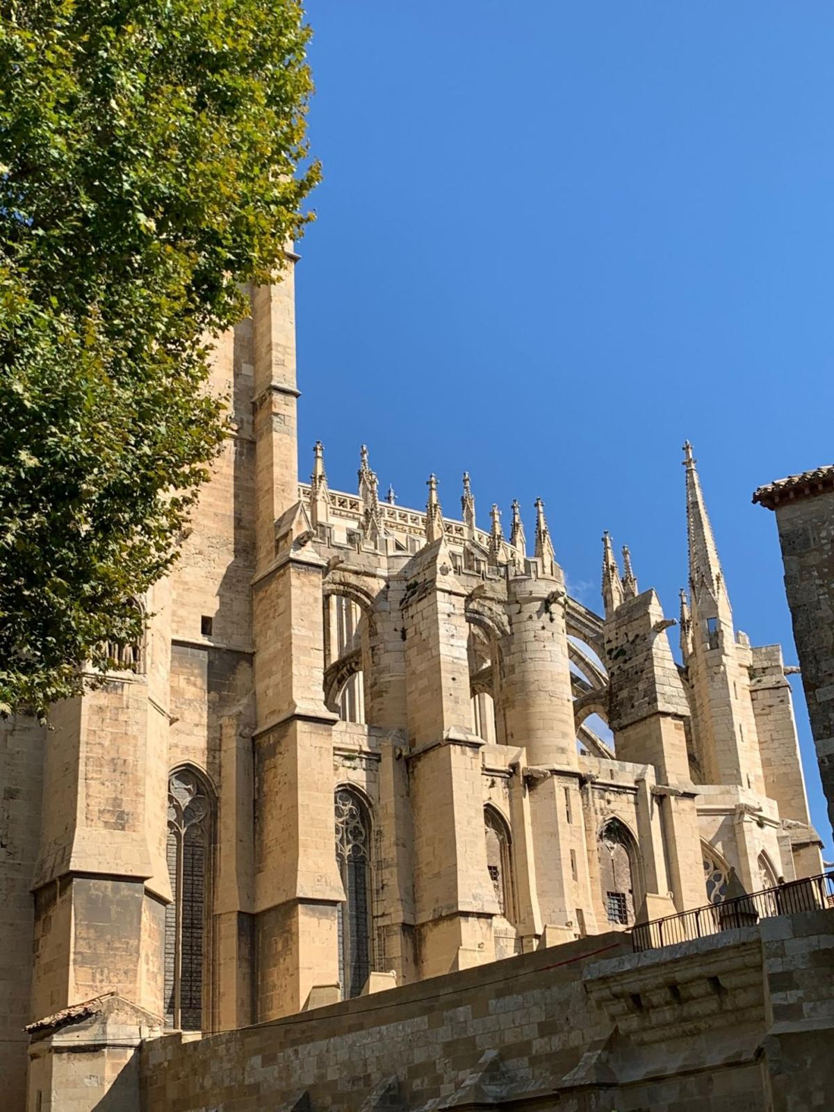 Norbonne Cathedral.jpg