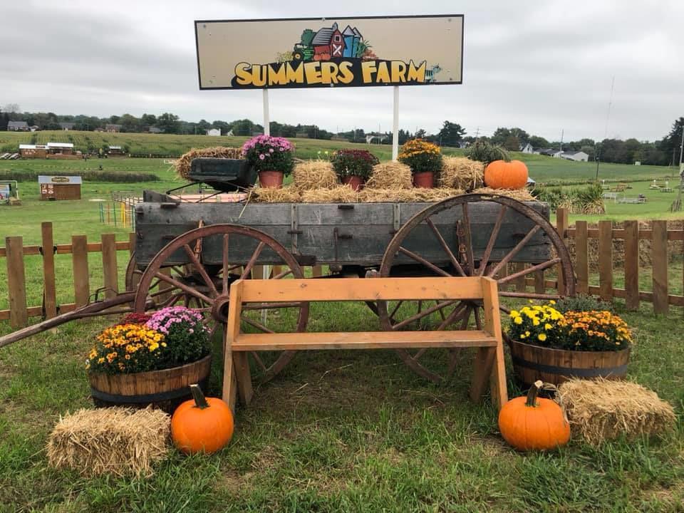 Summers Farm 2018