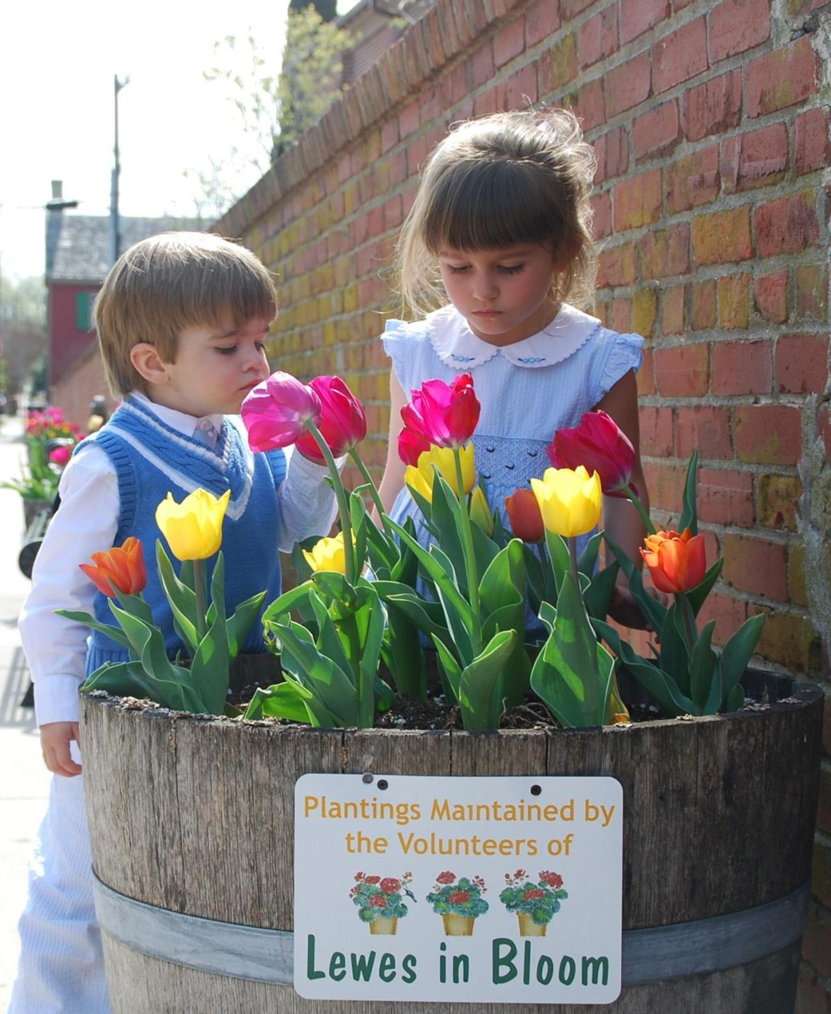Spring festivals draw visitors to Lewes