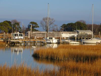 Smith Island Cruises take you to the middle of the Chesapeake Bay