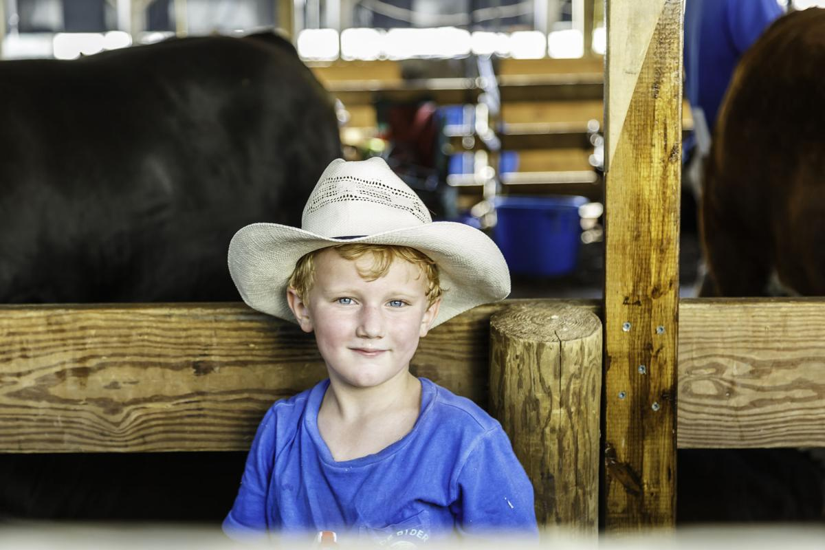 Kids and Farm Animals at the Howard County Fair