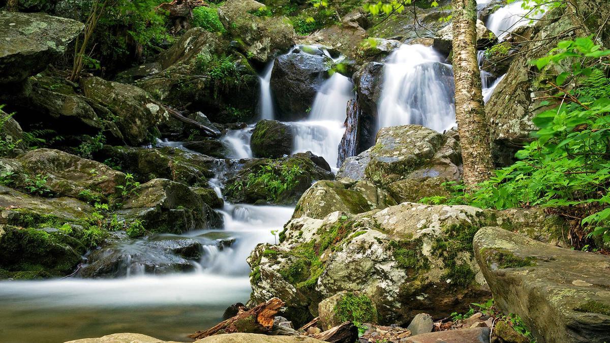 DArk Hollow Falls - National Parks Conservation Association.jpg