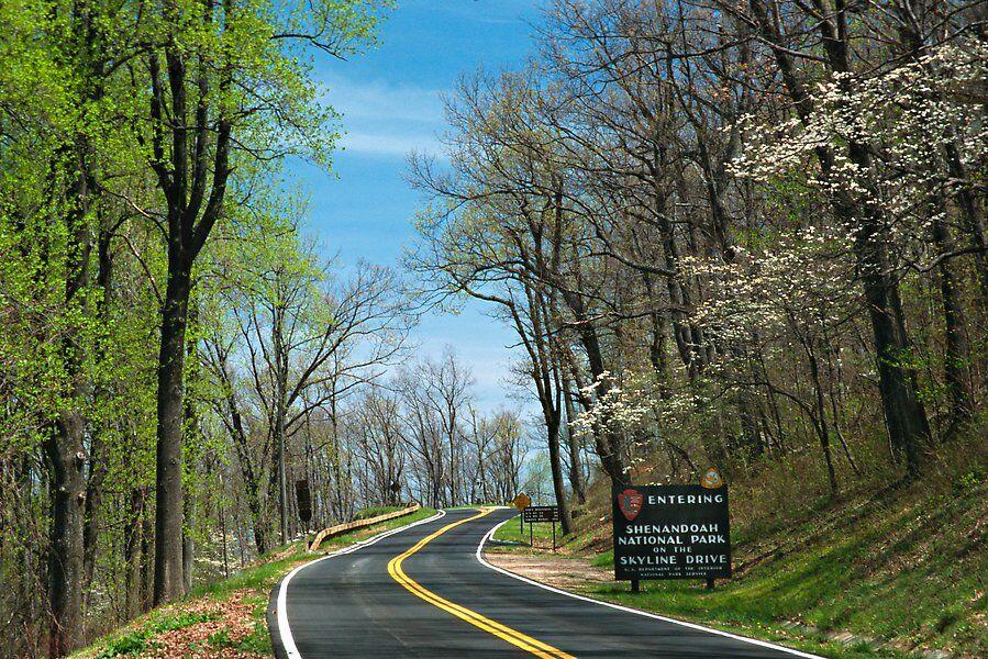 Skyline_Drive_Virginia Dept of Historic Resources.jpg