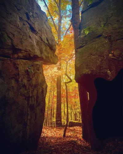 Coopers Rock State Forest 2 by Pete Wildey Fine Art.jpg