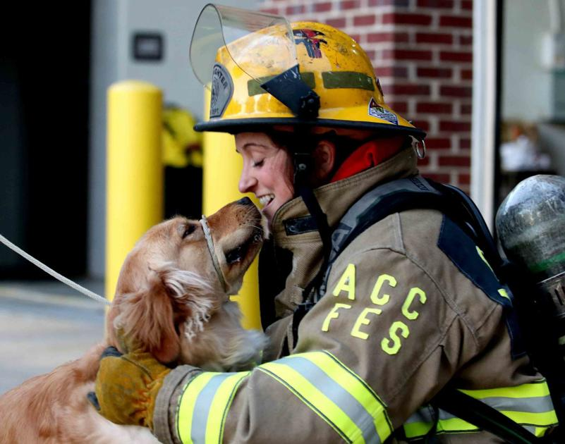 PHOTOS: Guide Dog Foundation hosts canine costume contest, training session at fire station