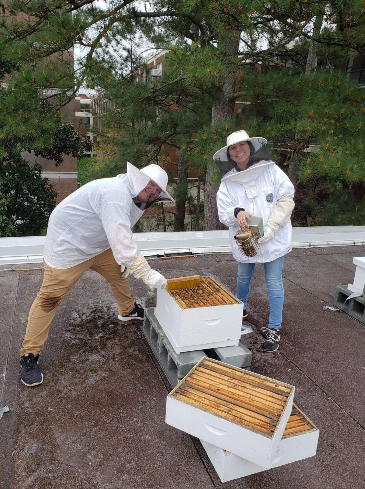 uga bee club